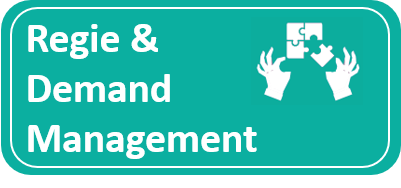 regie en demand management